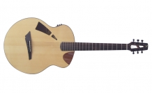 Skylark Acoustic (demi cutaway and pierced headstock)
