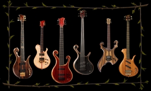 Xylem Custom Guitars and Basses